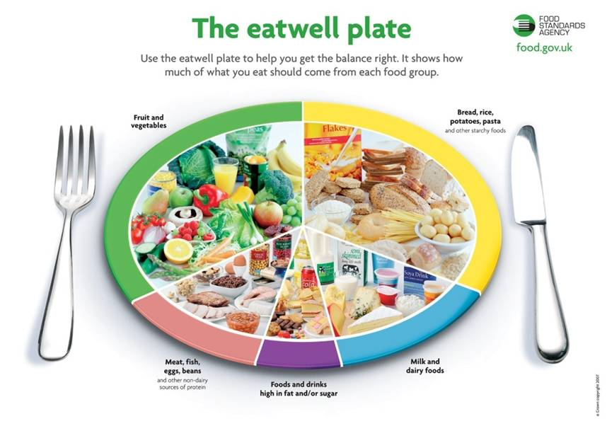 Eat Well Plate And Food Diary